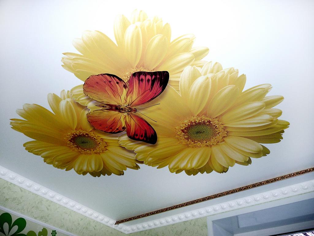 натяжные потолки фотопечать картинки фото есть желание